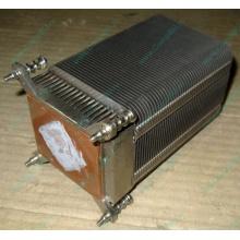 Радиатор HP p/n 433974-001 для ML310 G4 (с тепловыми трубками) 434596-001 SPS-HTSNK (Благовещенск)
