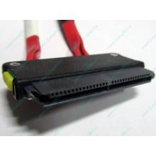 SATA-кабель для корзины HDD HP 451782-001 459190-001 для HP ML310 G5 (Благовещенск)