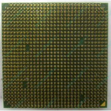 Процессор AMD Sempron 3000+ (1.6GHz) SDA3000IAA3CN s.AM2 (Благовещенск)